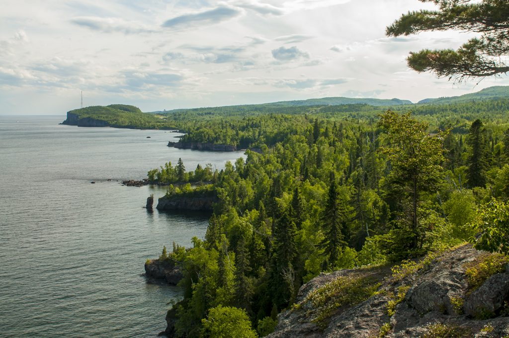 Tettegouche State Park forest and shoreline