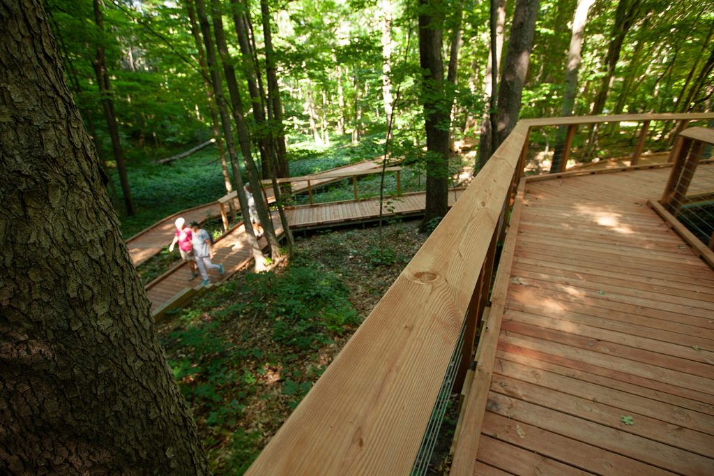 The Overlook Trail features a series of switchbacks, which were designed to minimize the impact on the forest.