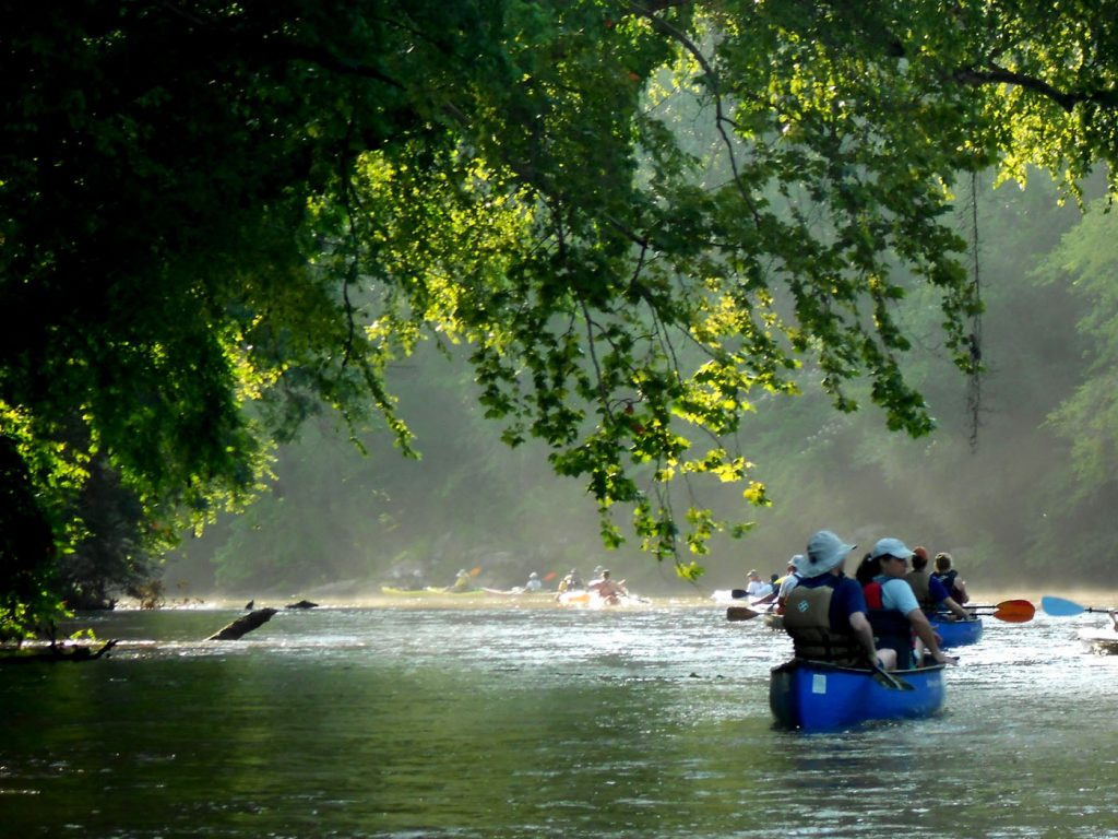 Groups of people canoe down a river in Georgia.